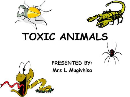 TOXIC ANIMALS PRESENTED BY: Mrs L Mugivhisa. Course objectives Classification of toxic animals Toxin transfer structures of animals / apparatuses Venomous.