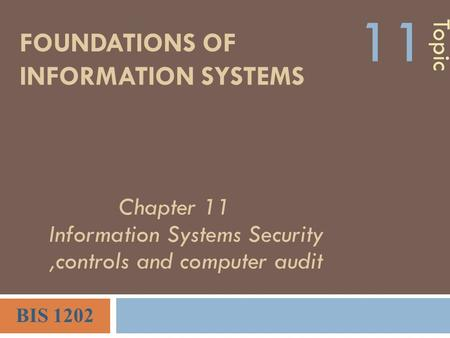 FOUNDATIONS OF INFORMATION SYSTEMS Topic 11 BIS 1202 Chapter 11 Information Systems Security,controls and computer audit.