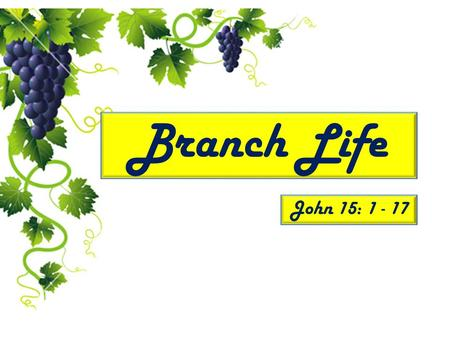 Branch Life John 15: 1 - 17. Presented by: Lost Sheep Ministries.