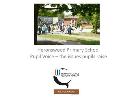 Heronswood Primary School Pupil Voice – the issues pupils raise