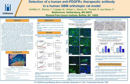 01/22/2010 – 7:45pmeSlide – P6617 – MedImmune 4 x 8 Poster Template Detection of a human anti-PDGFR  therapeutic antibody in a human GBM orthotopic rat.