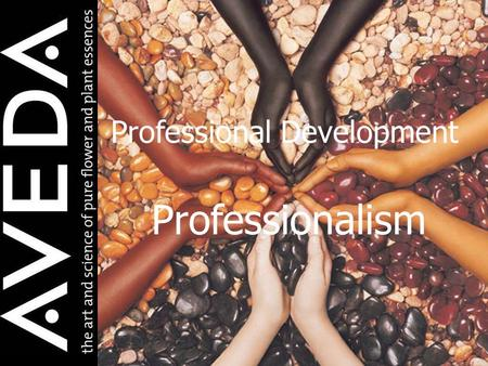 Professionalism Professional Development. Perception Immediate or intuitive recognition or appreciation, as of moral, psychological, or aesthetic qualities;
