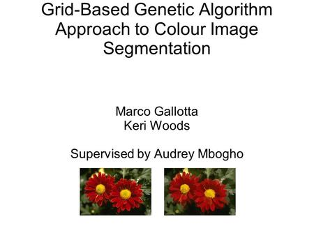 Grid-Based Genetic Algorithm Approach to Colour Image Segmentation Marco Gallotta Keri Woods Supervised by Audrey Mbogho.