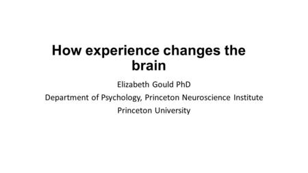 How experience changes the brain Elizabeth Gould PhD Department of Psychology, Princeton Neuroscience Institute Princeton University.