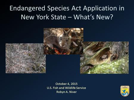 Endangered Species Act Application in New York State – What's New? October 4, 2015 U.S. Fish and Wildlife Service Robyn A. Niver.