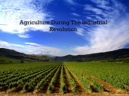 Agriculture During The Industrial Revolution. Agriculture Before The Industrial Revolution Before the Industrial revolution, agriculture was inefficient.