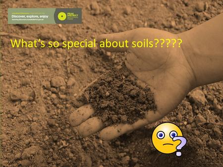 What's so special about soils?????. Why is soil important?