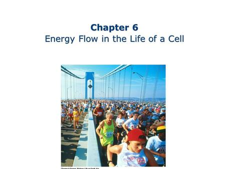 Chapter 6 Energy Flow in the Life of a Cell Chapter 6 Energy Flow in the Life of a Cell.