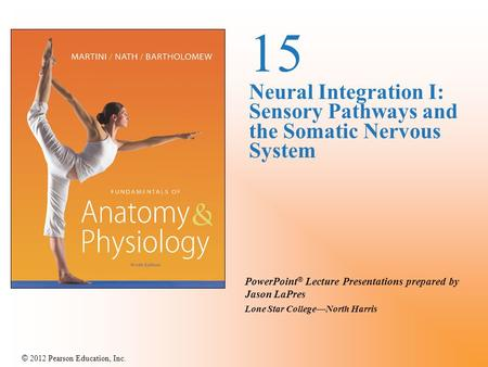 © 2012 Pearson Education, Inc. PowerPoint ® Lecture Presentations prepared by Jason LaPres Lone Star College—North Harris 15 Neural Integration I: Sensory.