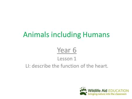 Animals including Humans Year 6 Lesson 1 LI: describe the function of the heart.