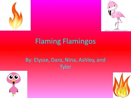 Flaming Flamingos By: Elysse, Dara, Nina, Ashley, and Tyler.