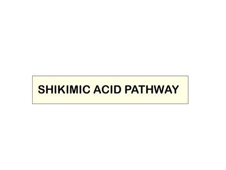 SHIKIMIC ACID PATHWAY. THE SHIKIMIC ACID PATHWAY This pathway (unique to plants) leads to the formation of the aromatic amino acids phenylalanine and.