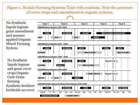 Figure 1. Rodale Farming Systems Trial with rotations. Note the presence of cover crops and amendment in organic systems. Synthetic fertilizer herbicide.