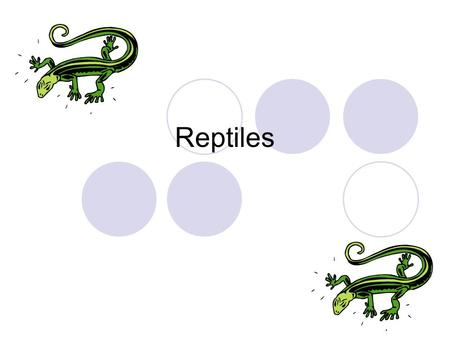 Reptiles. What are Reptiles? Cold-blooded vertebrates Use lungs to breathe Equipped with a bony skeleton, scales, or horny plates for protection have.