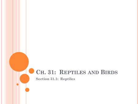 C H. 31: R EPTILES AND B IRDS Section 31.1: Reptiles.