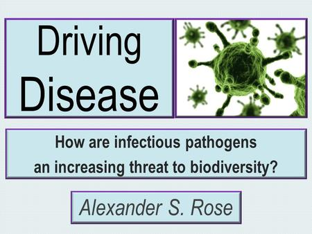 Driving Disease How are infectious pathogens an increasing threat to biodiversity? Alexander S. Rose.