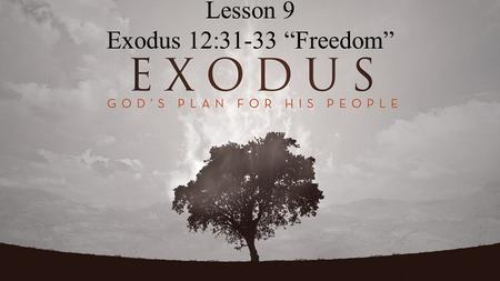 "Lesson 9 Exodus 12:31-33 ""Freedom"". Exodus 12:31-33 Then he called for Moses and Aaron by night, and said,  Rise, go out from among my people, both you."
