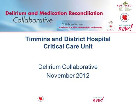 Timmins and District Hospital Critical Care Unit Delirium Collaborative November 2012.