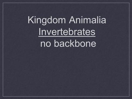 Kingdom Animalia Invertebrates no backbone. What is an Animal? Heterotrophic Eukaryotic Multicellular No Cell walls Most move-mobile Most do sexual reproduction.