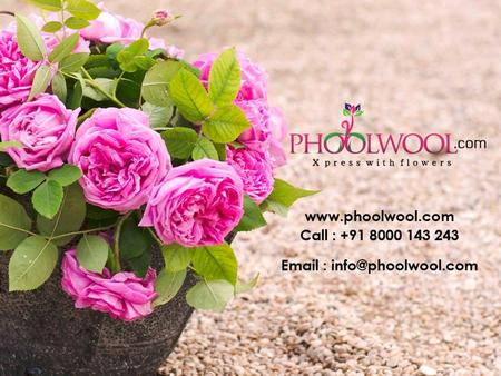 Who we are? Phoolwool.com is an online portal for customers to send personal expressions to their beloved with just a click away. It was established in.