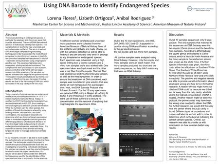 Using DNA Barcode to Identify Endangered Species Manhattan Center for Science and Mathematics 1, Hostos Lincoln Academy of Science 2, American Museum of.
