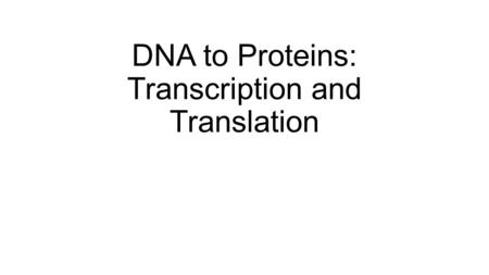 DNA to Proteins: Transcription and Translation. Sickle Cell Anemia Video.