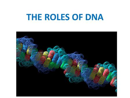 THE ROLES OF DNA.
