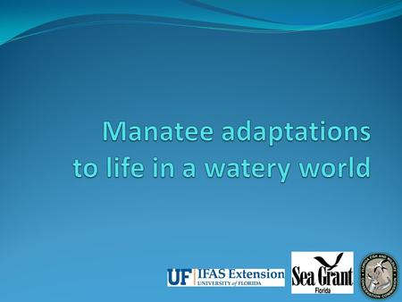 What is adaptation? Lesson 3: Manatee Adaptations.