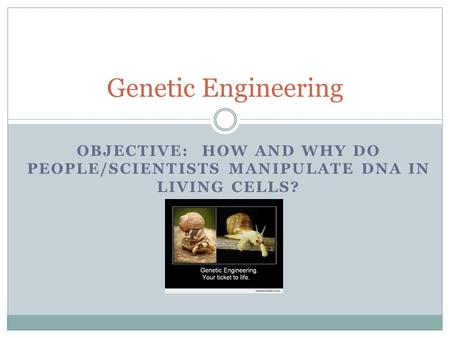 OBJECTIVE: HOW AND WHY DO PEOPLE/SCIENTISTS MANIPULATE DNA IN LIVING CELLS? Genetic Engineering.