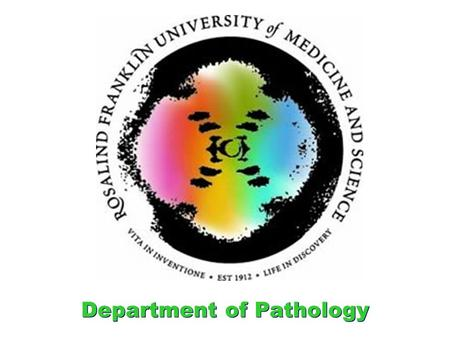 Department of Pathology. Iowa Anemia Cases Case Analyses by Dr. Schneider Tuesday, October 11, 2011 and Thursday October 13, 2011.