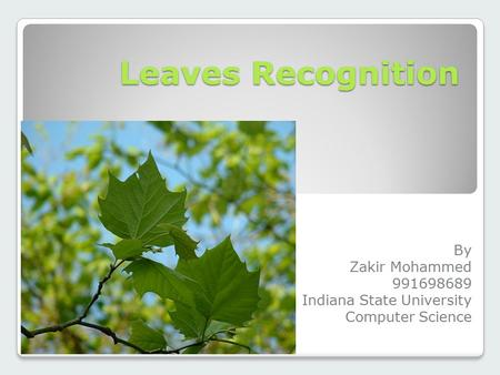 Leaves Recognition By Zakir Mohammed 991698689 Indiana State University Computer Science.