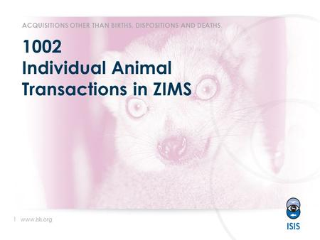 1 www.isis.org 1002 Individual Animal Transactions in ZIMS ACQUISITIONS OTHER THAN BIRTHS, DISPOSITIONS AND DEATHS.