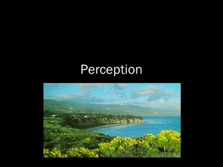Perception. The means by which information acquired from the environment via the sense organs is transformed into experiences of objects, events, sounds,
