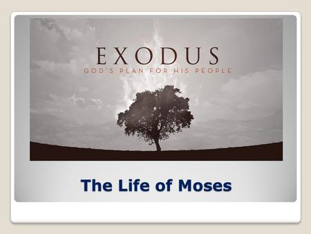 The Life of Moses. Exodus – Outline 1:1-2:25The Setting: Growth and Oppression of Israel in Egypt 3:1-6:27The Call and Commissioning of Moses 6:28-15:21The.
