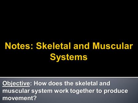 Objective: How does the skeletal and muscular system work together to produce movement?