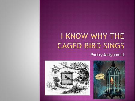"Poetry Assignment.  Please write a lyric poem entitled ""I know Why the Caged Bird Sings""  The poem does not have to rhyme – although it can  The poem."