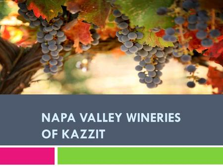 NAPA VALLEY WINERIES OF KAZZIT. Napa Valley in California has become synonymous for its incredible selection of wines that are produced there, but this.