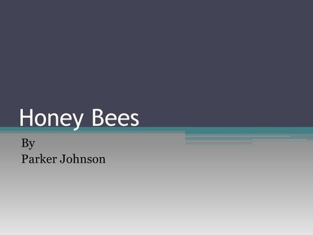 Honey Bees By Parker Johnson. Where Bees Live/ Ability to Adapt The honey bees is a very widespread insect Sadly it is endangered Humans are the main.
