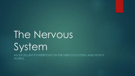 The Nervous System AN EXCELLENT POWERPOINT ON THE NERVOUS SYSTEM AND HOW IT WORKS.