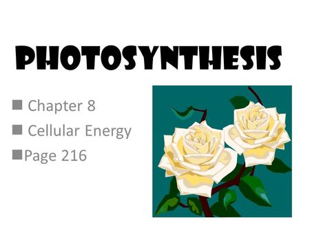 Photosynthesis Chapter 8 Cellular Energy Page 216.