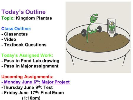 Today's Outline Topic: Kingdom Plantae Class Outline: - Classnotes - Video - Textbook Questions Today's Assigned Work: - Pass in Pond Lab drawing - Pass.