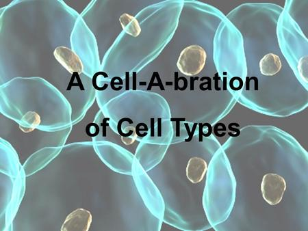 A Cell-A-bration of Cell Types. Which component of the cell theory is represented by the following diagram 1.All living things are made of cells 2.Cells.