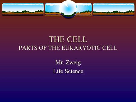 THE CELL PARTS OF THE EUKARYOTIC CELL Mr. Zweig Life Science.