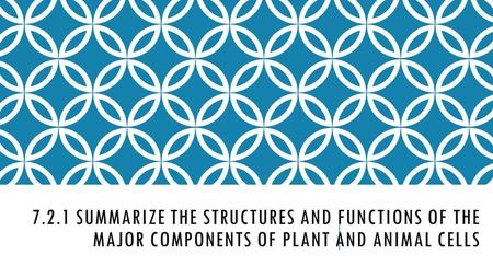 7.2.1 SUMMARIZE THE STRUCTURES AND FUNCTIONS OF THE MAJOR COMPONENTS OF PLANT AND ANIMAL CELLS.