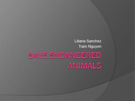 Liliana Sanchez Tram Nguyen. Questions  What do you know about endangered animals?  What would you do to save endangered animals?  What is your favorite.