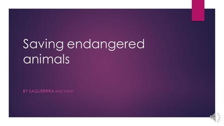 Saving endangered animals BY SAQUERRRA AND FAITH.