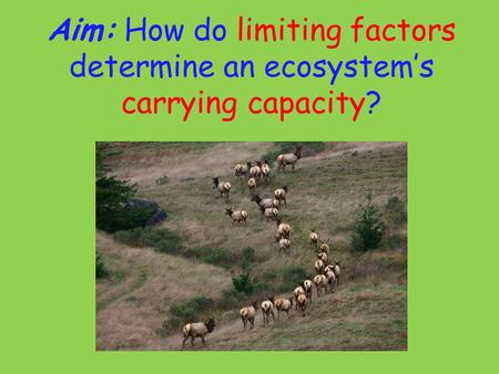 Aim: How do limiting factors determine an ecosystem's carrying capacity?