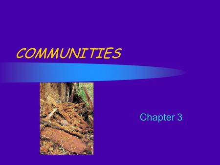 Chapter 3 COMMUNITIES. A. Community All populations of organisms living in a defined area. Habitat - the physical place where an organism lives. What.