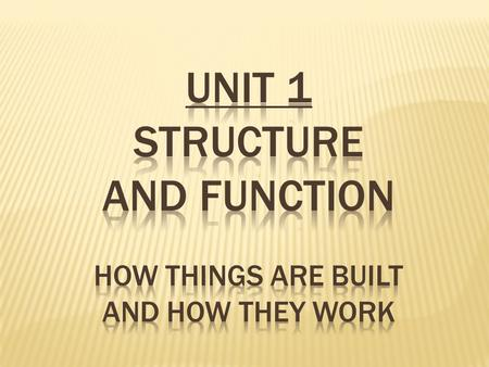 At every level of organization structure is arranged based on function.