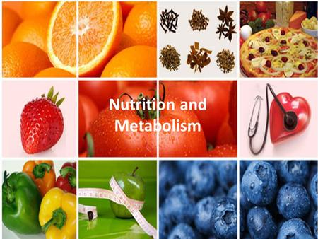 Nutrition and Metabolism. Metabolism All of the chemical reactions that occur in cells – Reactants – Products Metabolic pathways – A series of reactions.